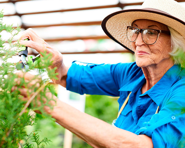 Gardening at Trico Living Well